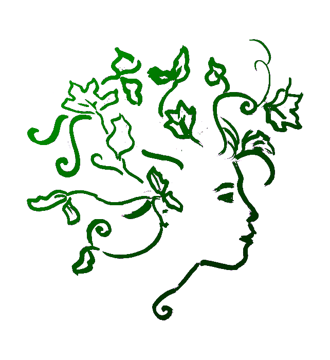 logo murmure des forêts